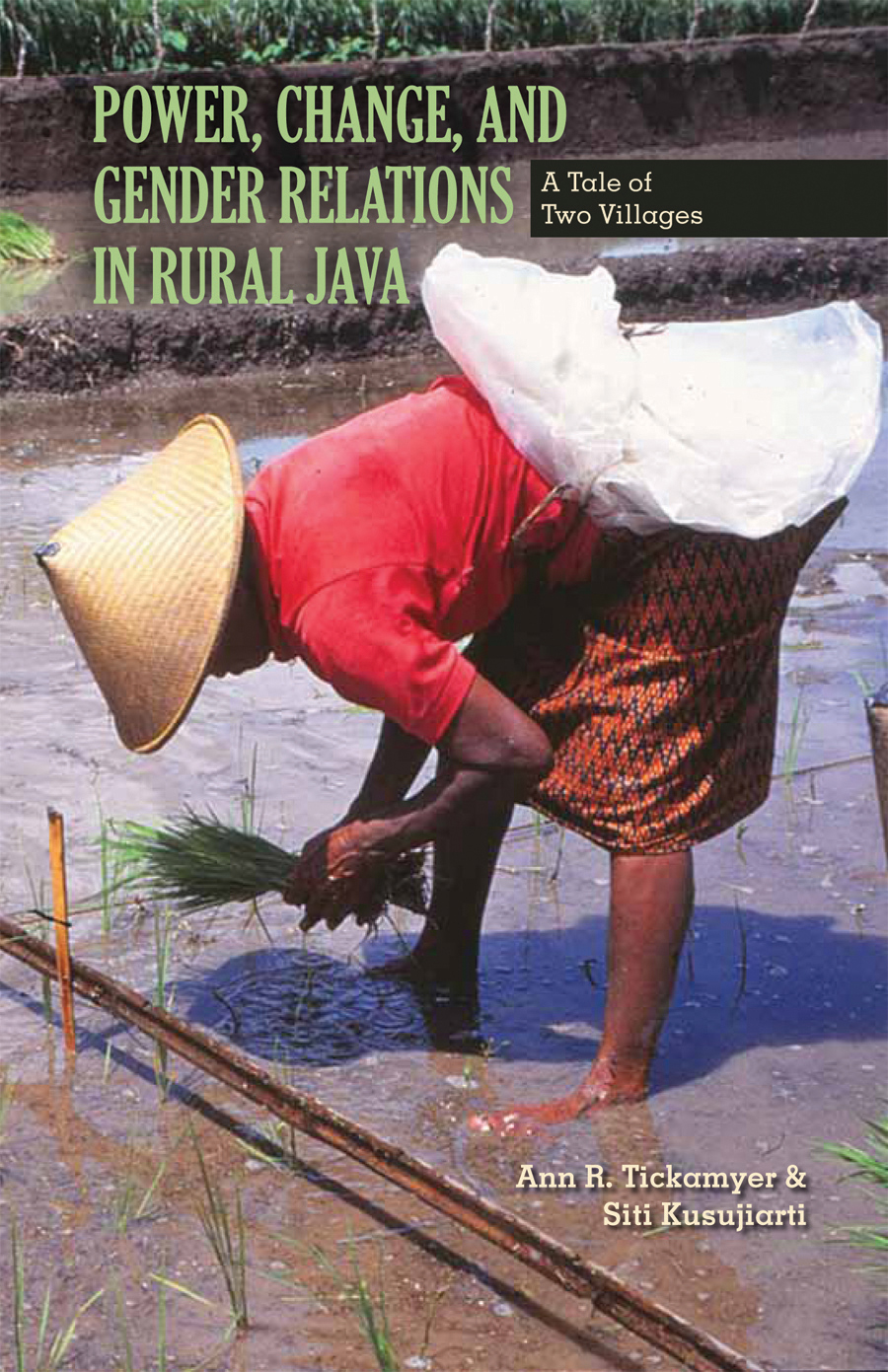 Power Change And Gender Relations In Rural Java A Tale