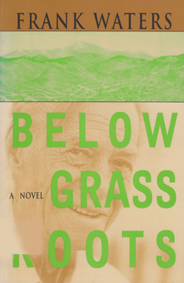 Cover of 'Below Grass Roots'