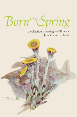 Cover of 'Born in the Spring'