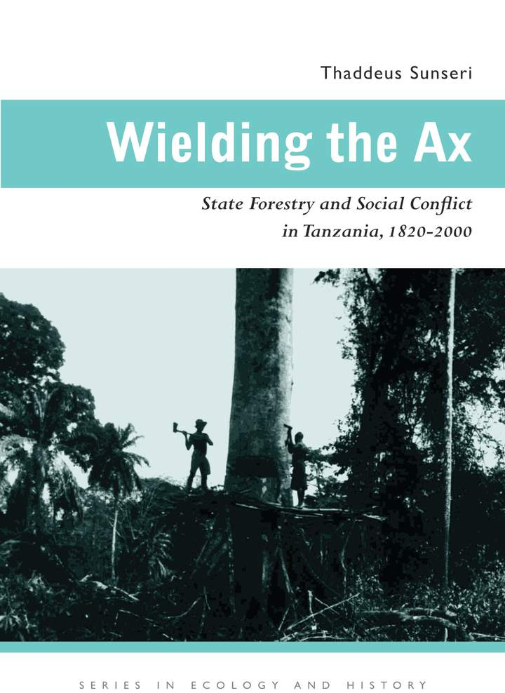 Cover of 'Wielding the Ax'