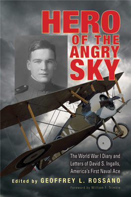 Cover of 'Hero of the Angry Sky'