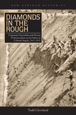 Cover of 'Diamonds in the Rough'