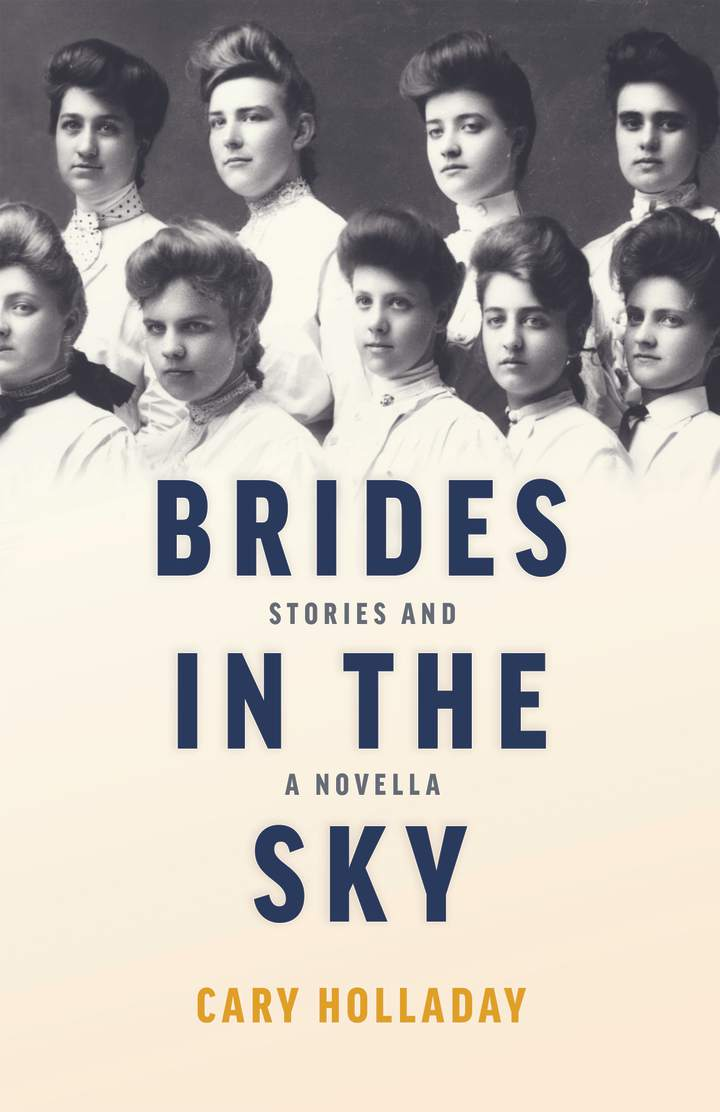 Cover of 'Brides in the Sky'
